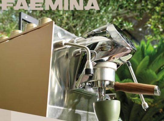 Faemina: Brochure